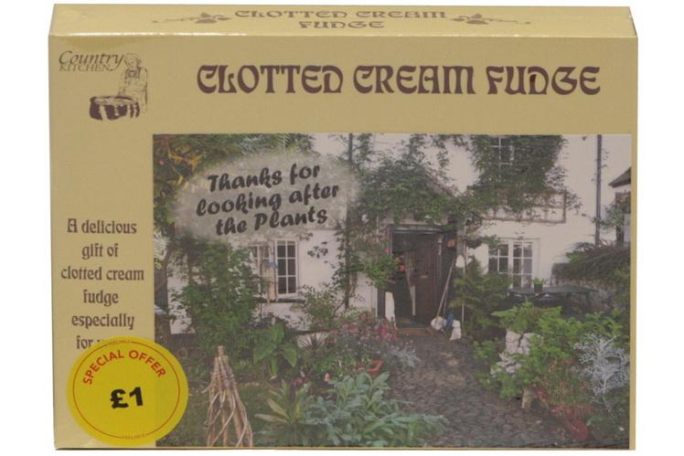 100g Clotted Cream Fudge 'Plant' Postcard Box