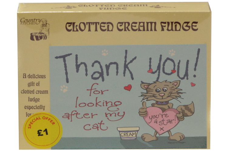 100g Clotted Cream Fudge 'Cat' Postcard Box