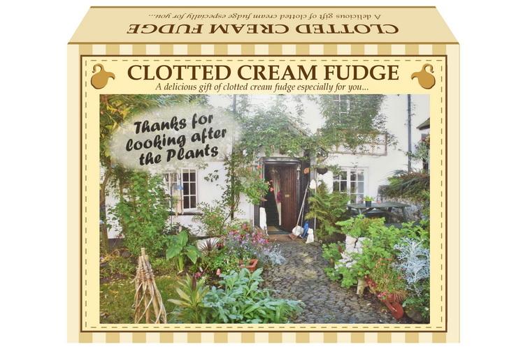 "100g Clotted Cream Fudge ""Plant"" Postcard Gift Box"