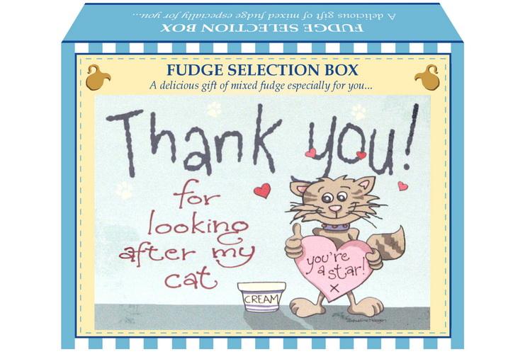 "100g Mixed Fudge ""Cat"" Postcard Gift Box"