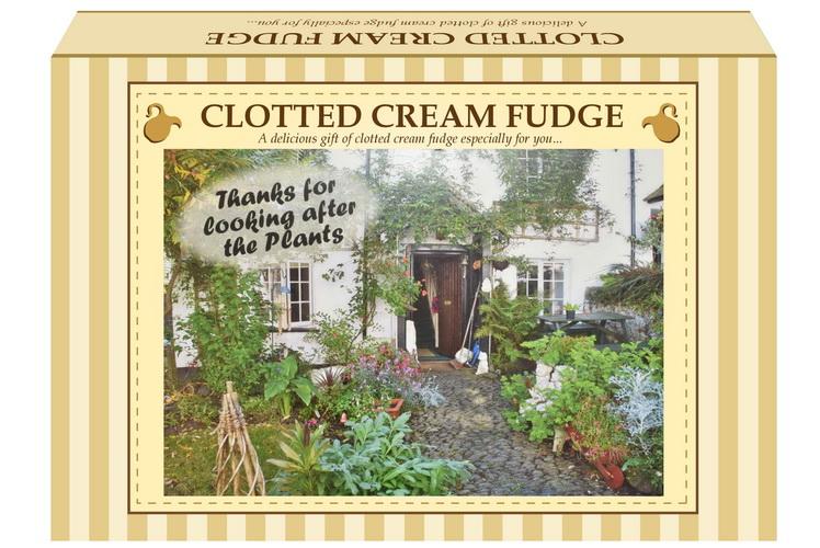 "200g Clotted Cream Fudge ""Plant"" Postcard Gift Box"