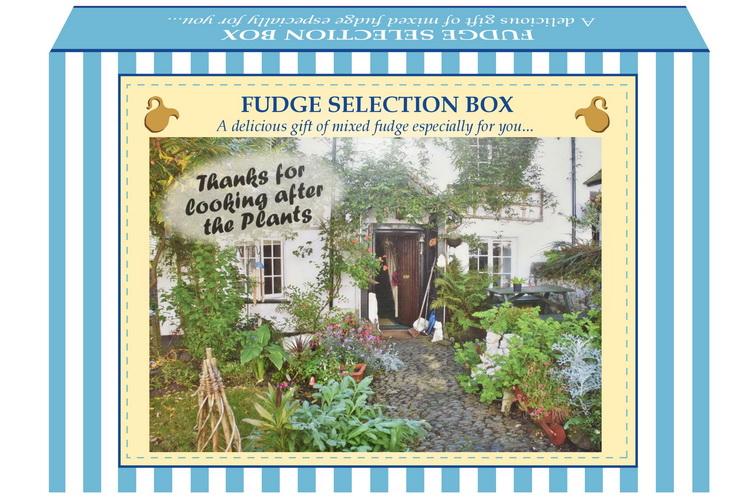 "200g Mixed Fudge ""Plant"" Postcard Gift Box"