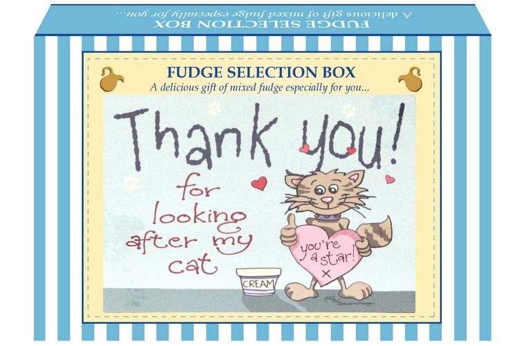 "200g Mixed Fudge ""Cat"" Postcard Gift Box"