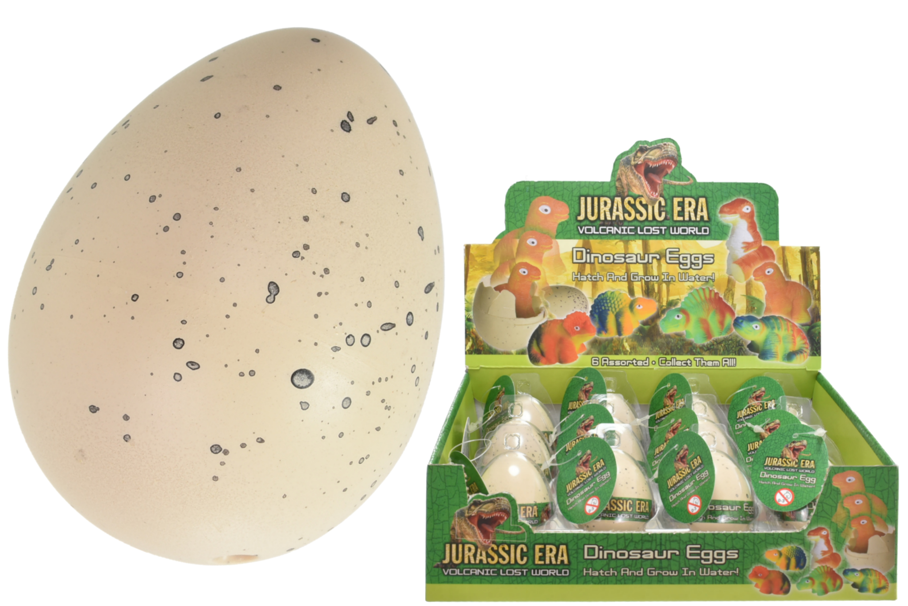 Small Growing Dinosaur Egg (6 Assorted) In Display Box